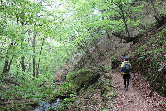 150429御岳山トレラン-2