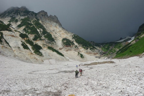 白馬岳 テント泊 大雪渓と高山植物を満喫