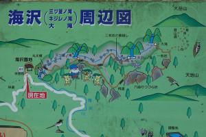 海沢探勝路地図