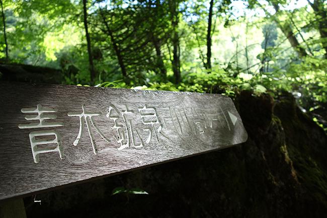 青恋鉱泉ドンドコ沢1507