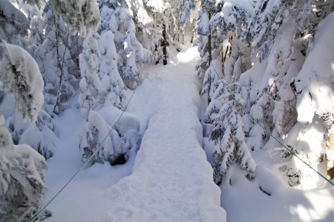 八ヶ岳北横岳冬-7