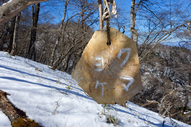 西丹沢大室山の冬-20