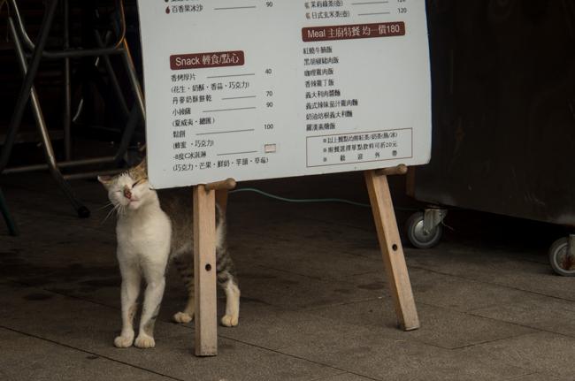 台北DAY2-26