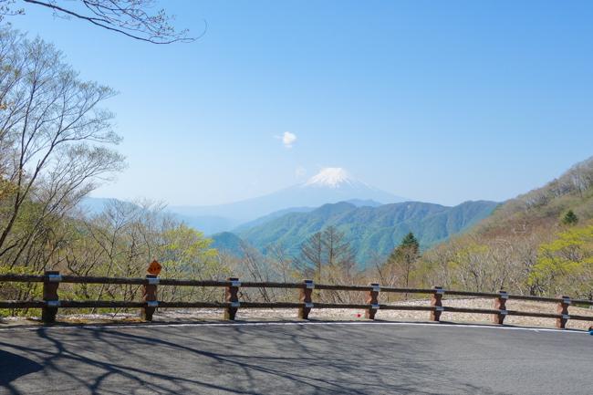 雁ヶ腹摺山〜姥子山-26