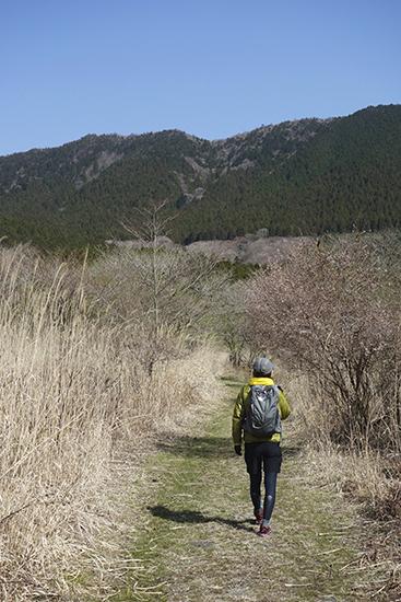 雨ヶ岳へ0418