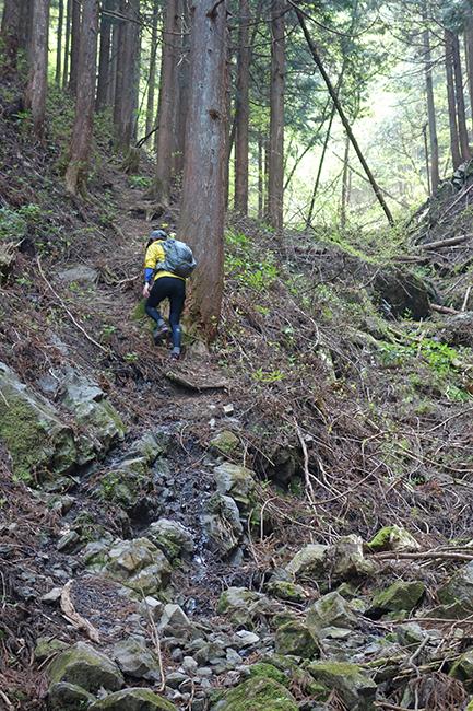 150429海沢探勝路登り-2