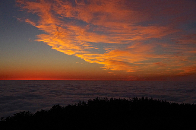 雲取山 雲海