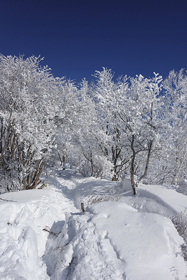 赤城山冬15-24