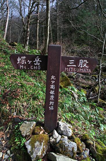 蝶ヶ岳GW-8