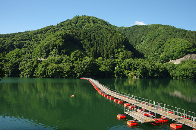 ドラム缶橋から三頭山へ!笹尾根~槇寄山~数馬バス停