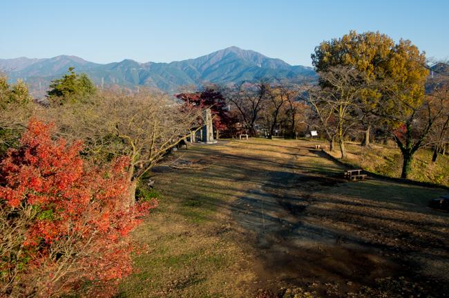 秦野弘法山から大山-9