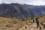 コルカ渓谷 ペルー1409