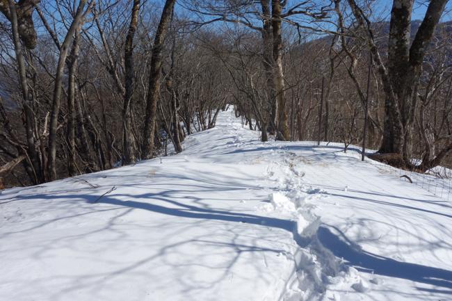冬の西丹沢へ 用木沢〜加入道山〜大室山〜犬越路
