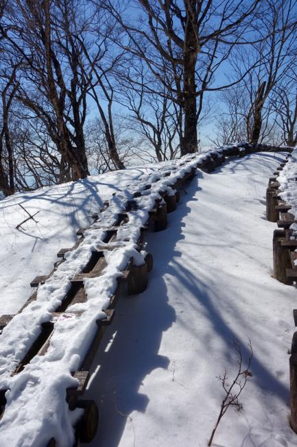 西丹沢大室山の冬-24