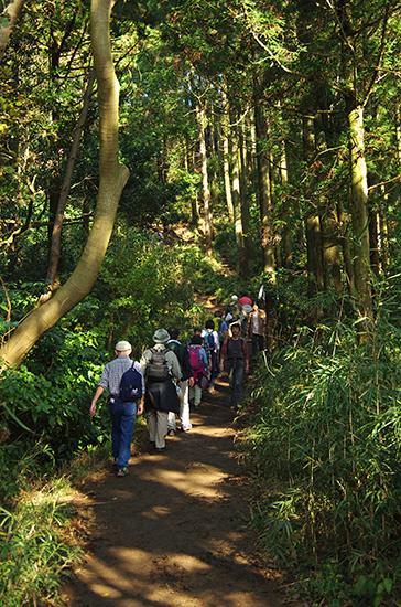天園ハイキングコース14-7