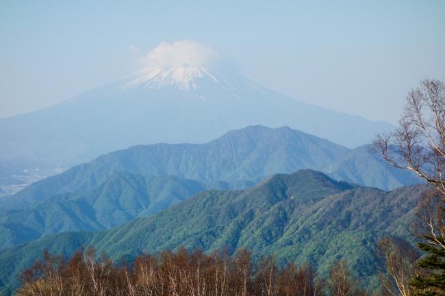 雁ヶ腹摺山〜姥子山-6