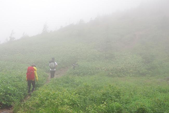 焼岳日帰り 新中の湯~焼岳小屋~上高地