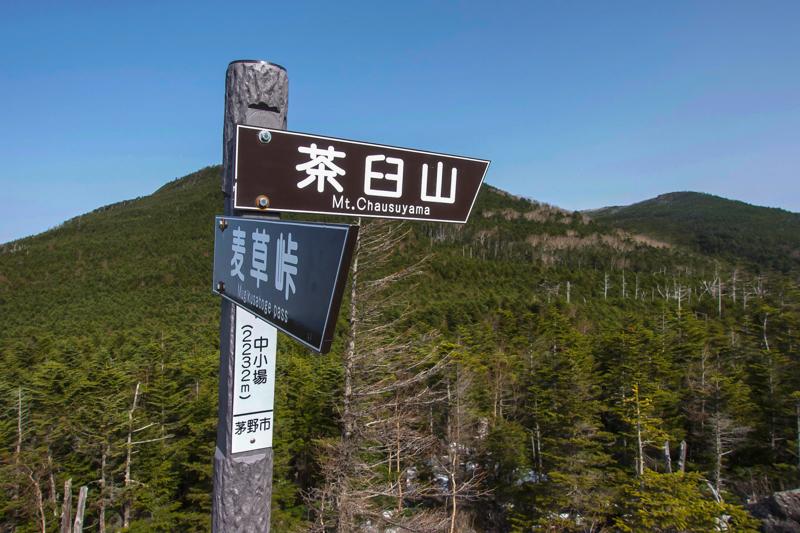 縞枯山〜北横岳-4