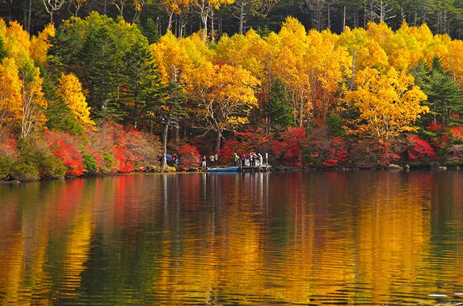 白駒池の紅葉~高見石からの絶景 北八ヶ岳散歩2014