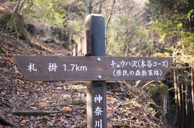 丹沢長尾尾根-22