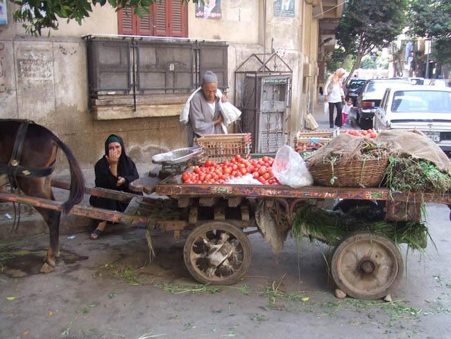 断食に備えて野菜を買い込んだ